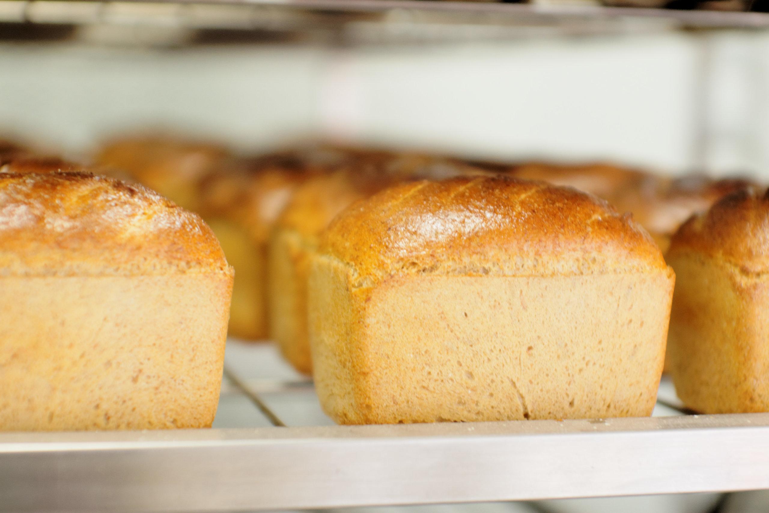 "Lechem, Brot, Chleb,לחם  ""Panis nove vitae"" -Chleb zdrowego życia."